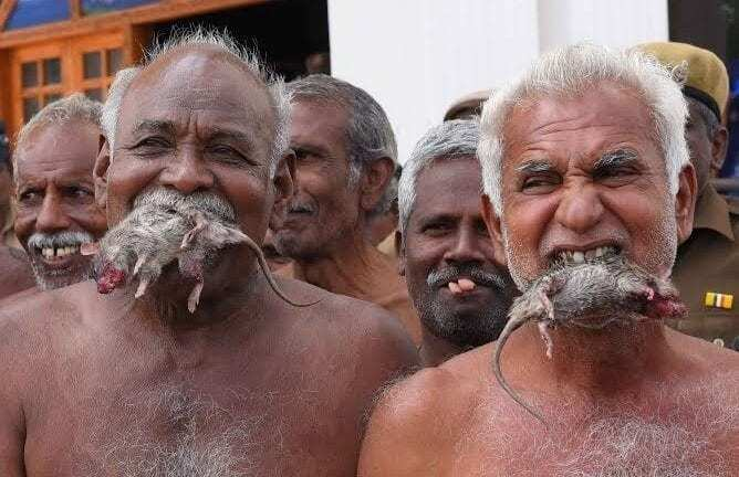 picture of starving men eating rats as an example of how to stop using food for comfort