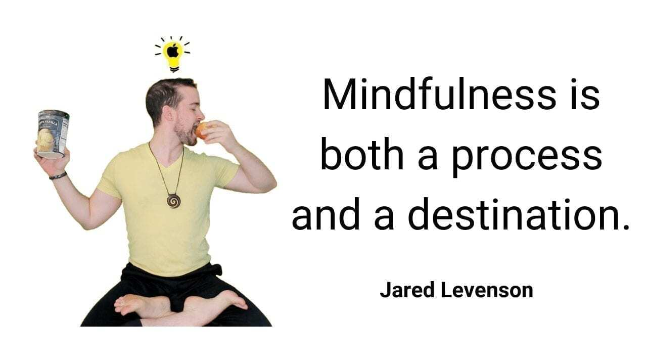 Mindfulness is both a process and a destination quote by jared levenson