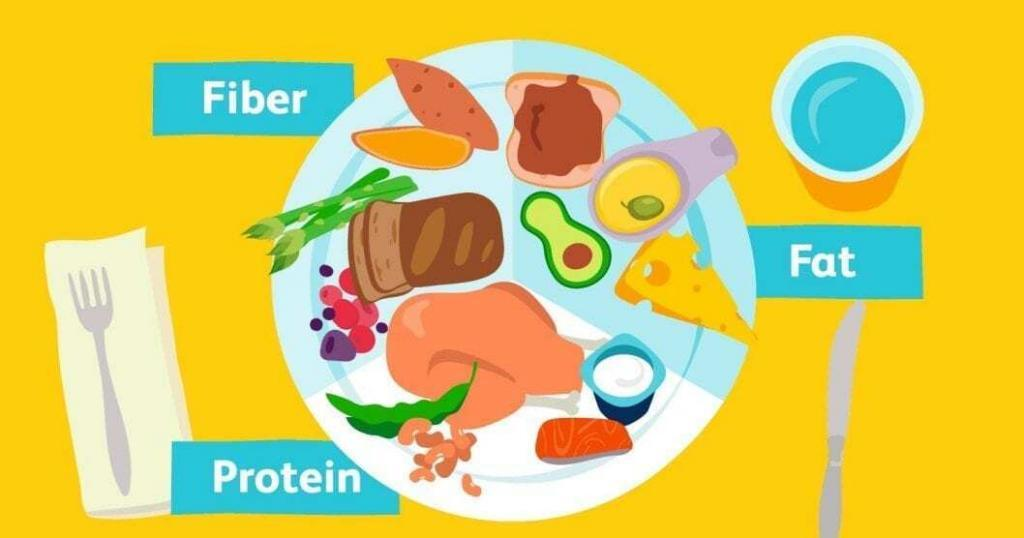 fiber protein and fat