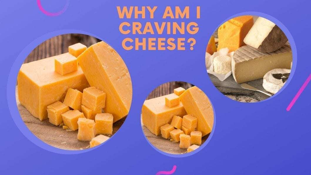 why am i craving cheese?