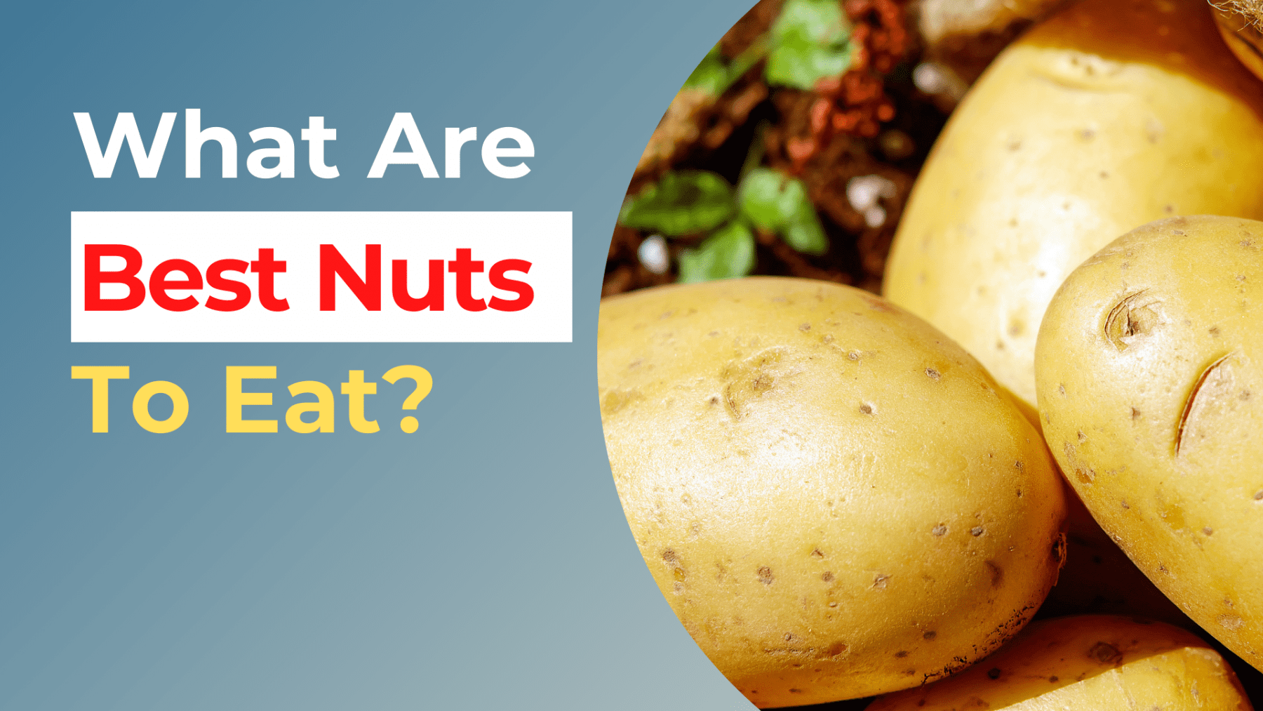 What Are The Best Nuts To Eat